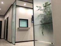 стеклянные перегородки с дверью